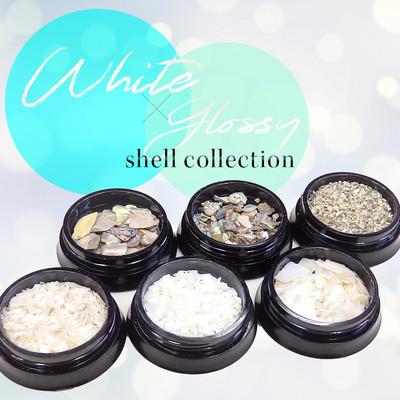 ホワイト&グロッシーシェルコレクション 6種